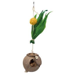 kokosnoot aan sisaltouw foerageerspeelgoed